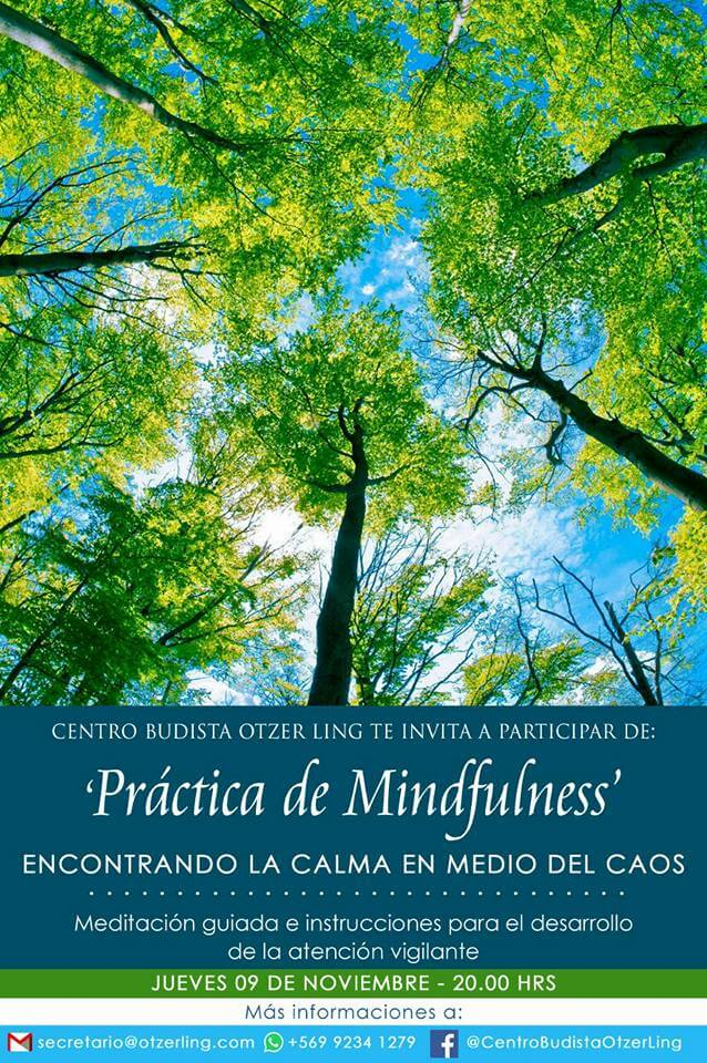 Taller de una sesión de Mindfulness