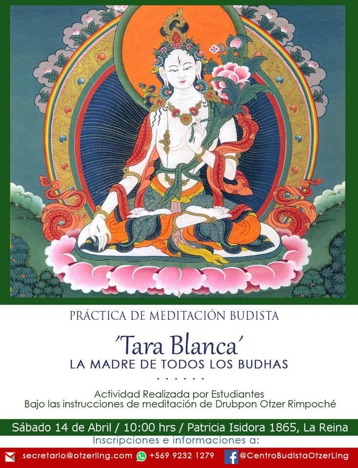 Taller de Meditaciones Budistas