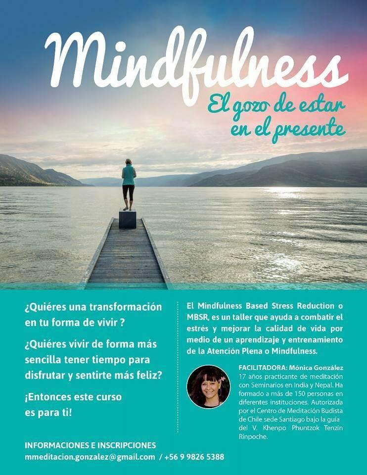 Curso de Mindfulness: El gozo de estar en el Presente