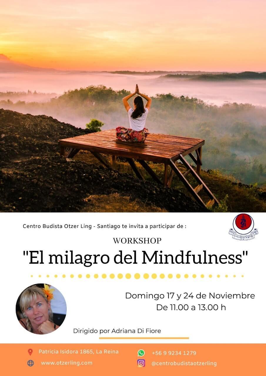 Workshop – El milagro del Mindfulness