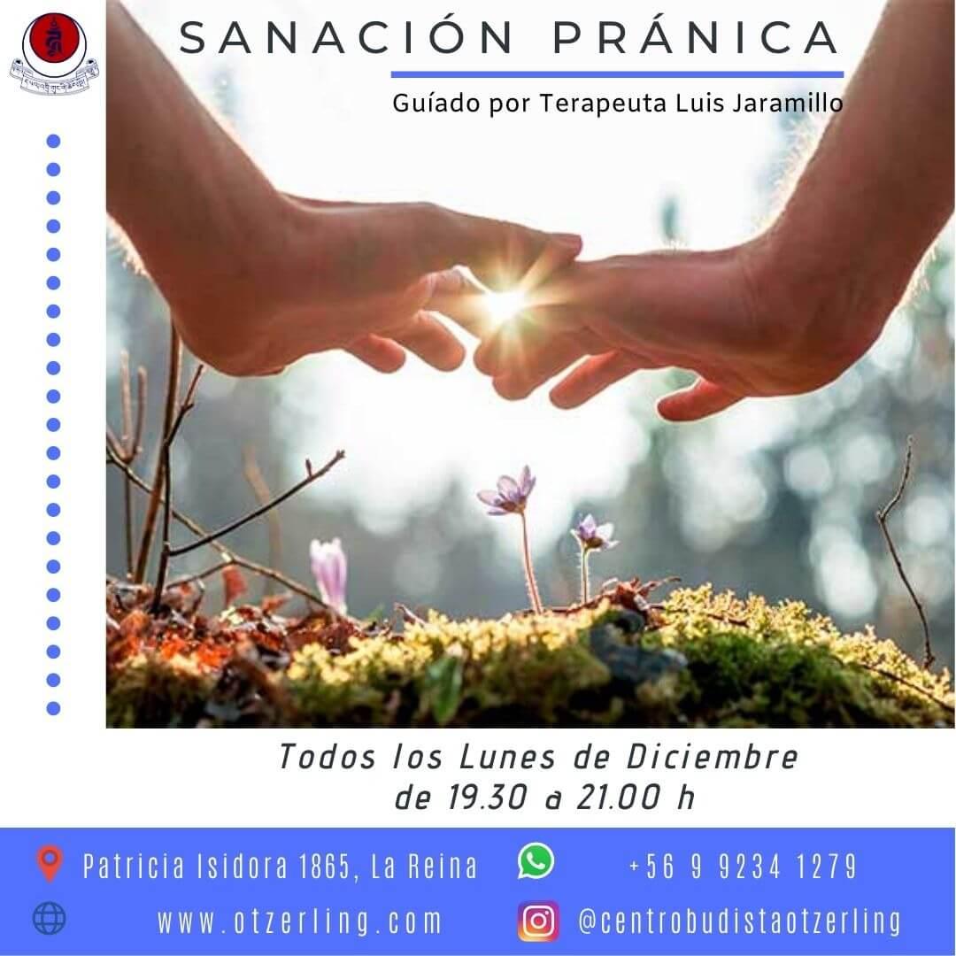 Sanacion Pranica Grupal